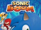 Sonic Boom: The Sidekick