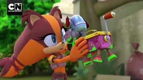 Sticks' New Pet I Sonic Boom I Cartoon Network