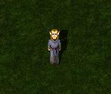 Mago elfico
