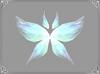 Wings of Spirits