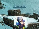Guía de la 1ra Quest