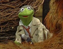 Reporter Kermit Big Bird's Story Time
