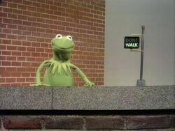 Kermit walk dont walk