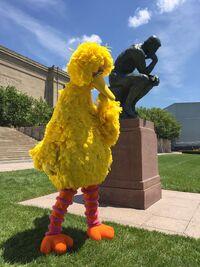 Big Bird Thinker 2019-07-13
