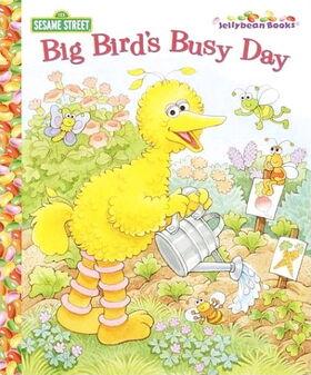 Bigbirdsbusyday