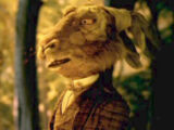 The March Hare (Alice in Wonderland)