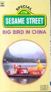 Bigbirdchinavideo