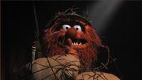 Muppets-com93