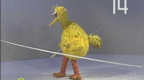 Sesame Street Twenty Love With Tony Danza