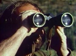 Binoculars watch bears