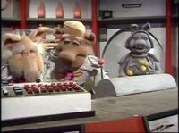 513 pigs in space