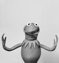 SüddeutscheZeitung-Kermit-02-HowIsShe
