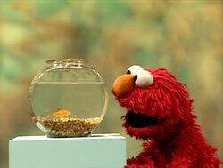 ElmoDorothy.Number