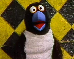 Zero penguin arbor ep 1624