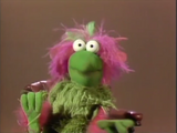 Muppets with miosis and mydriasis