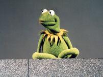 Kermit the Frog's collar