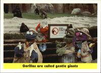 1992 sesame trading cards 100