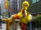 Big Bird in Japan