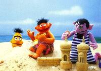 Ernie bert beach