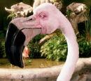 Flamingoes (Alice in Wonderland)