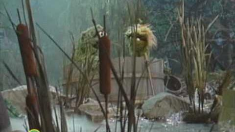 Sesame Street Alone in a Swamp