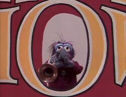 216 trumpet