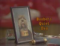 Boober'sQuietDayUK