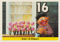 Sesamecard 017 Ernie flowers