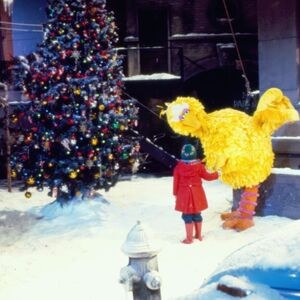 Big Bird and Patty Experience the Tree