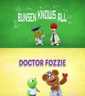 Bunsen Knows All - Doctor Fozzie