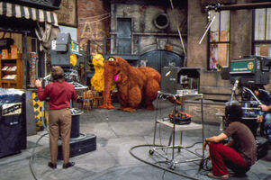 Big bird snuffy cameras season 3