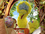 Big Bird's family