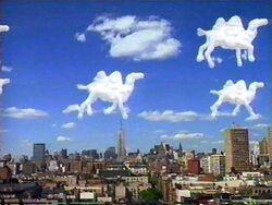 CamelClouds