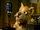 Terry Terrier