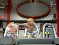 Pigsinspace324