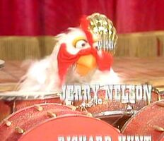 Animal-chicken