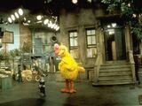 Sesame Street (location)