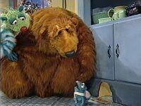 Bear403c