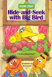 Hide-and-Seek with Big Bird