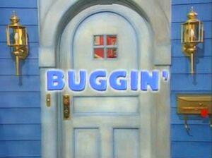 01 Buggin' Title Display