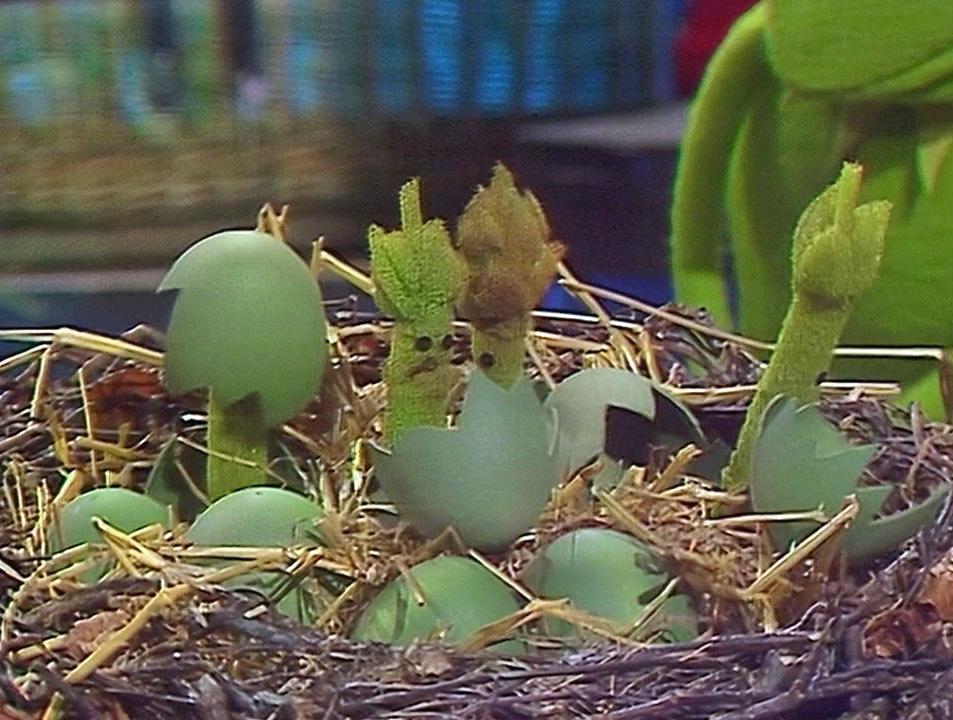 File:511 asparagus eggs.jpg