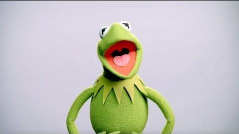 Kermit the Frog Buzzes In Muppet Thought of the Week by The Muppets