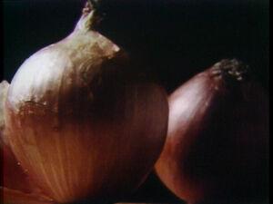 Onionzoomout