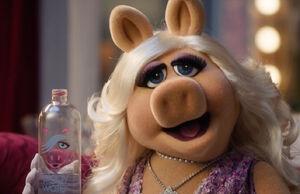 Piggy Water