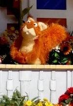 Sesameplacesquirrel