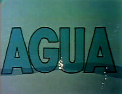 Word.AGUA.70s