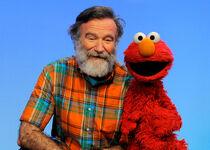 Robin Williams s42 Elmo