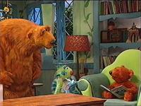 Bear310c