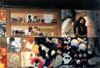 Exhibit-JimHenson'sMuppetsMonstersAndMagic-163englandfahrt