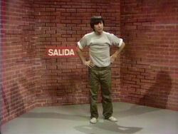 Luis-SalidaBricks